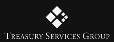 Treasury Services Group